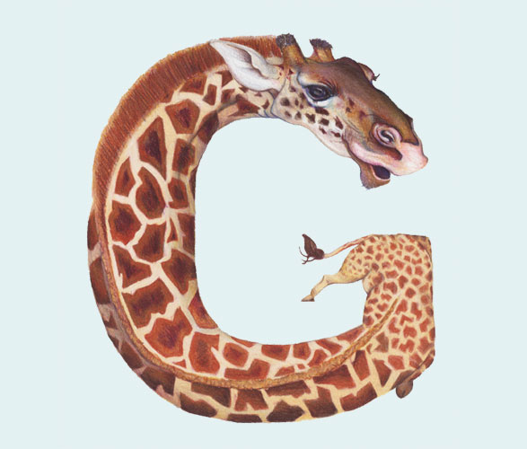 Creative vector Inspiration- Animals in Alphabetical Letters