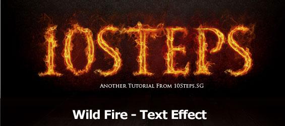 wildfiretextd