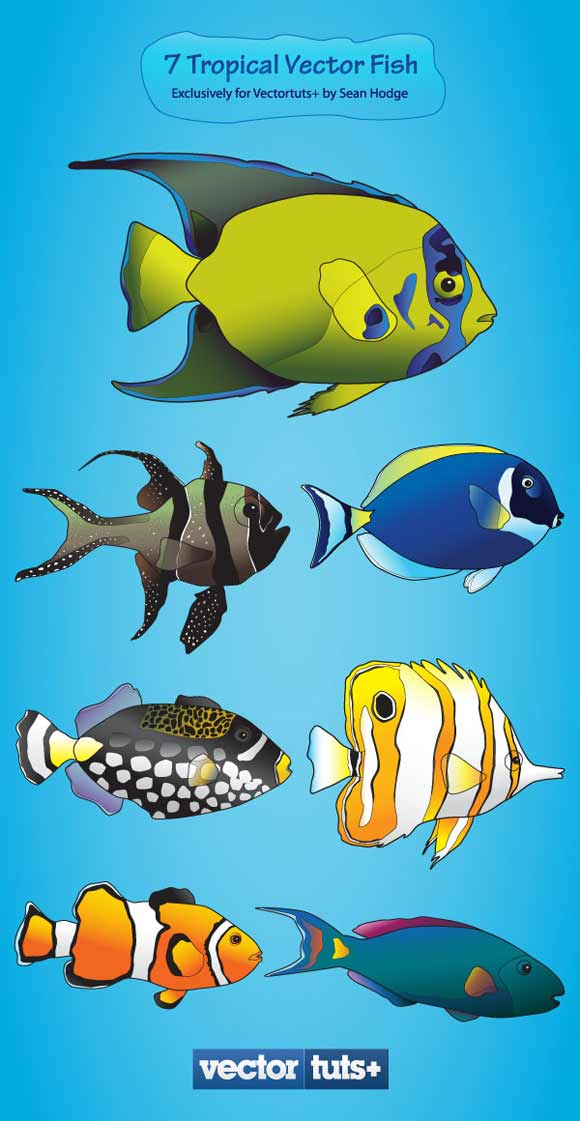 Colorful Vector Plus Pack – Tropical Fish