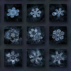 How to take Macro Snowflakes Photography under $50 Customized Lens