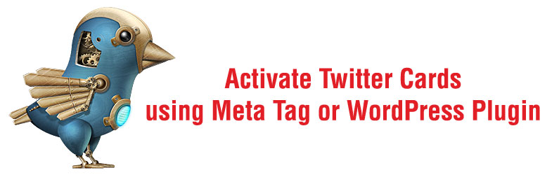 Activate Twitter Cards using Meta Tag or WordPress Plugin for Approval