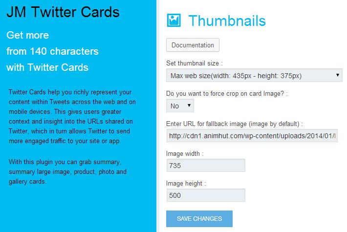 Twitter Card Settings