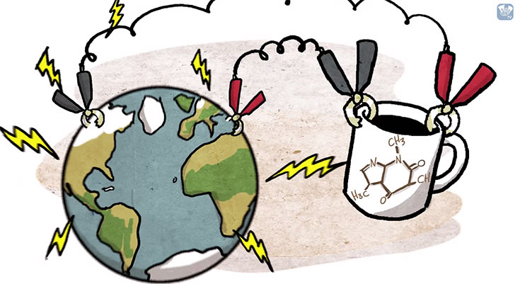 Coffee energies the world