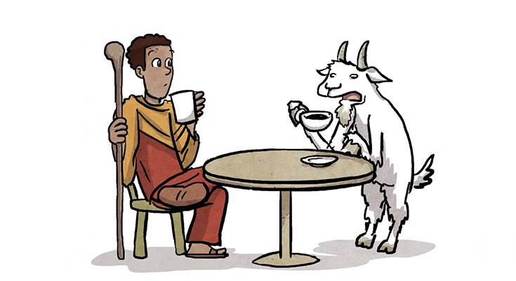 Goat opinion on Coffee is bad if consumed more