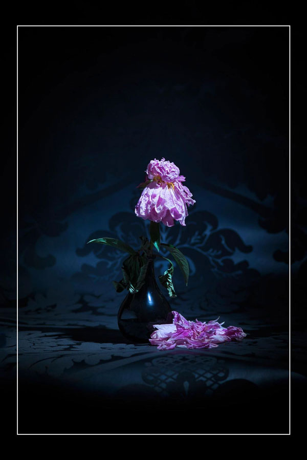 Bond Between Human and Peony - Fine art Nude Project (4)